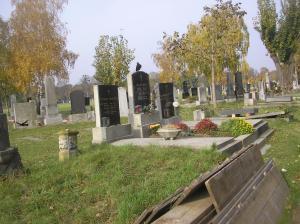nov2009