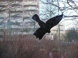 vogelfuervoegel2010