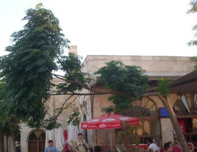 Rechtwinkliger Baum (in Aleppo)