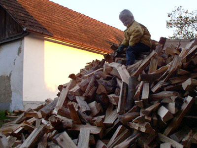 Oskar und das Holz fuer den Winter