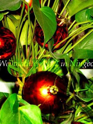 Weihnachten Nr.2 in Ningbo