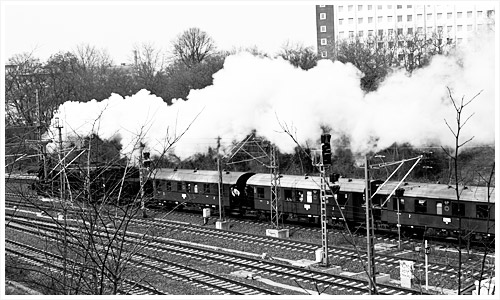 Dampflok 52 8177 mit dem Traditionszug