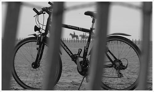 Mein Ex-Fahrrad in der Camargue