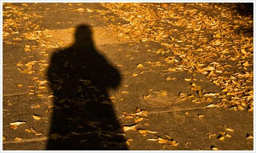 Der lange Schatten des Herbst