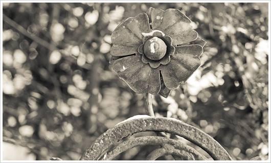 Eine eiserne Blume an der alten Schmiede in Rixdorf