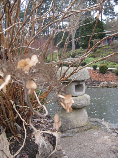 Japanischer Garten Westfalenpark